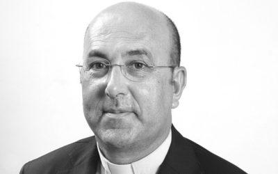 Preparação do instrumento de trabalho para a assembleia diocesana